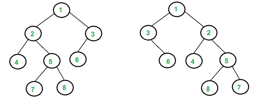 tree isomorphism problem